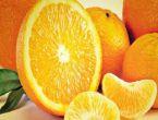 Bağışıklık sistemini güçlendirici besinler