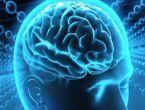 Beynimiz hakkında şaşırtan gerçekler