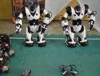 Şehir oyunları robot yarışması