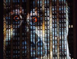 Nesli tükenen hayvanlar Empire State Binası'nda