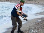 Kıyıya vuran Suriyeli çocuk Aylan Kurdi için dünya ayakta!
