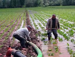 Çiftçiye hibe edilecek makineler!