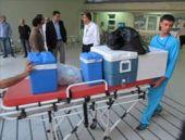 Organ nakli beklerken organları umut oldu