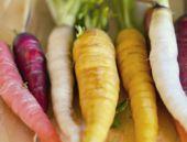 Kışı bu gıdaları yemeden geçirmeyin!
