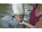 Balıktan korkan kadın TIKLA GÖR