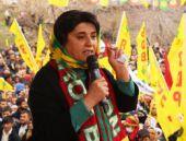 Zana: AİHM'in Öcalan kararı özgürlük demek!