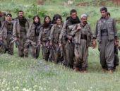 PKK'lı silah bırakırsa bu hakkı alacak!
