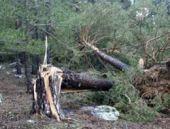 Eskişehir'de şiddetli rüzgar