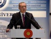 'Erdoğan'ın Kobani'de anlayamadığı göremediği...'