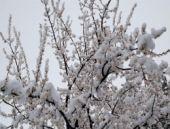 Kartalkaya'da yapay kar bereketi
