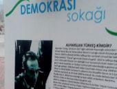 Türkeş'in fotoğrafı Ülkücüleri kızdırdı