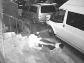 Köpeğe tecavüz davasında şok karar!