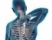 Hangi organ ne kadar sürede yaşlanır?