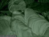 Survivor Adasını fareler bastı herkes uyurken