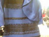 Bu elbise ne renk Sosyal medya ikiye bölündü!