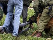 Tepkiler İsrail'e geri adım attırdı!