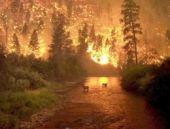 İtfaiyenin 'gönüllü' üyesi orman yaktı