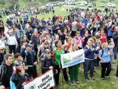 Taş ocağı ve zeytin katliamı protesto edildi