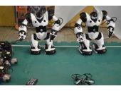 Türk öğrencilerin yaptığı robotlar birbiriyle yarıştı