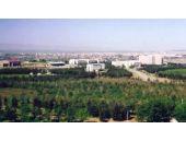 Kürdistan Üniversitesi kuruluyor! Başvuru yapıldı