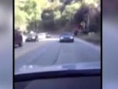 Şaşkın sürücü öyle becerikli çıktı ki...
