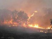 Lice'de operasyon sonrası orman yangını çıktı
