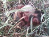 İşte astsubayı vuran IŞİD'linin uyruğu