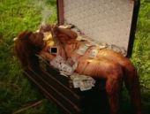 Rihanna'nın bu görüntülerine eleştiri yağdı!