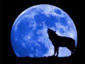 Yengeç burcu Süper Mavi ay nasıl etkileyecek