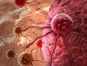 Kansere neden olan önemli etkenkler