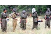 Güvenlik güçleri açıkladı! Kaç terörist öldürüldü?