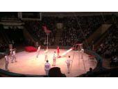 Sirk gösterisinde korkunç kaza