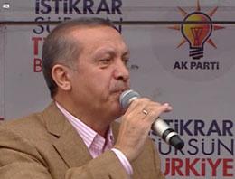 Başbakan Recep Tayyip Erdoğan, Van mitinginde Kürt seçmenlerine seslendi