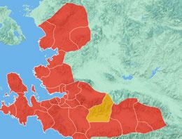 İzmir Selçuk seçim sonuçları 2014