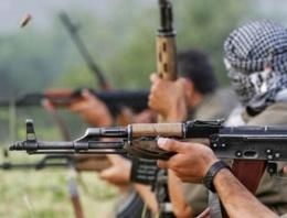PKK'dan Muş'a gece baskını baskın!