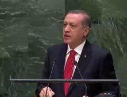 Mısır'dan zehir zemberek Erdoğan açıklaması!