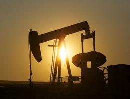 ABD IŞİD'in petrol gelirini açıkladı...
