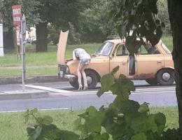 Bu halde otomobil tamir etmeye çalışınca...