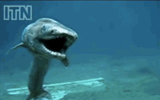 Denizler altında hala canavarlar!