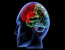 Beyin yaşınızı böyle öğrenebilirsiniz...