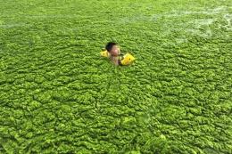 Çin'den korkunç fotoğraflar