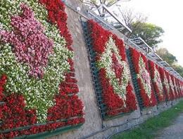 İstanbul'un çiçeklerine servet gibi harcama