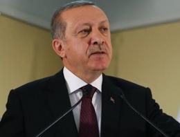 Penguen'e Erdoğan'a hakaretten ceza!