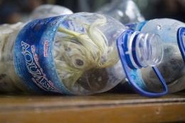 Akılalmaz kaçakçılık! Su şişesinde bulundu!