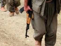 Almanya'da kaç bin PKK'lı var şok rapor