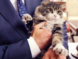 AK Partili Turan ile CHP'nin kedisi tartıştı