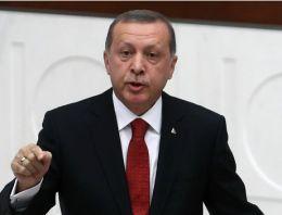 Erdoğan'ın restinden sonra Akkuyu'ya ilk talip