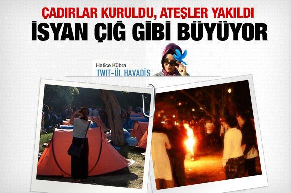 Twitter Gezi Parkı için ayaklandı!