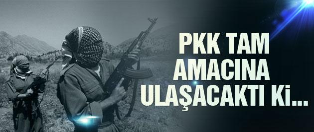 'PKK tam amacına ulaşacaktı ki...'
