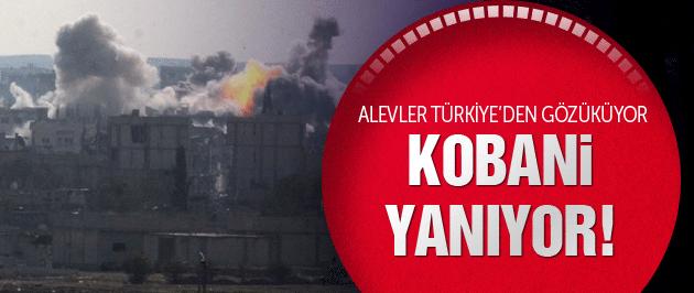 Kobani son dakika! Peşmerge geldi IŞİD çıldırdı!